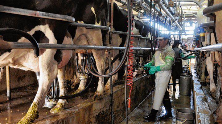 este año. En 2019 la producción lechera en la Argentina se contrajo 2%.