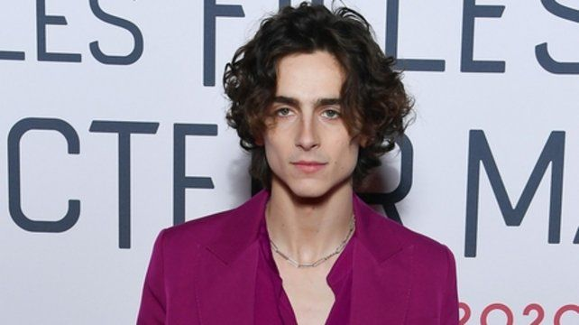 En ascenso. Timothée Chalamet.