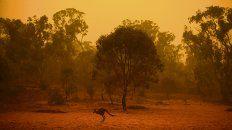 desastre. Los fuegos forestales son el nuevo sinónimo de Australia