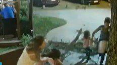 Un pino de 13 metros cayó sobre una nena en Costa del Este