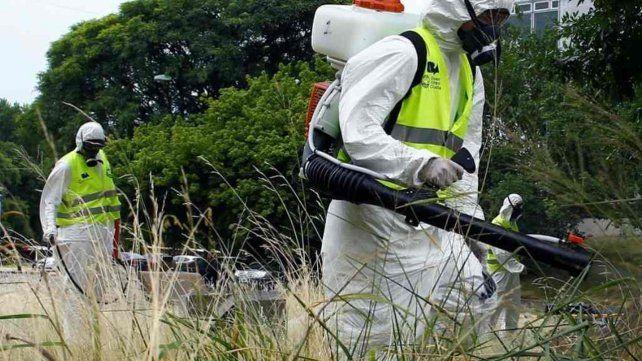 Rosario tiene algo más de mil infectados de dengue