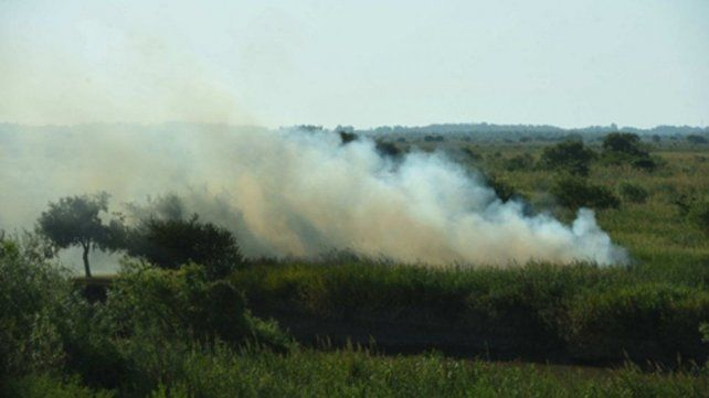 En lo que va del año hubo 20 incendios por día en la zona de islas