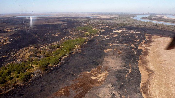 En lo que va del año ya son 500 mil las hectáreas quemadas en las islas