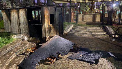 Bomberos lograron controlar un incendio en el Rosedal del Parque Independencia