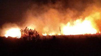 Un gran incendio se desató en la zona de countries en Santo Tomé
