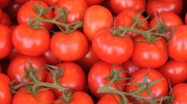 La mitad de las latas de tomate que se venden en argentina son ...
