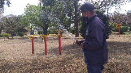 El trabajador municipal con la manguera regando las semillas.