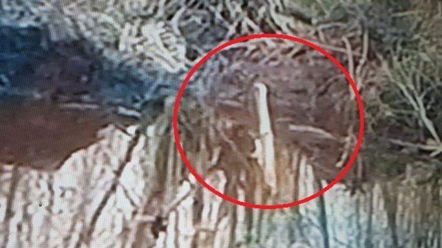 Primeras imágenes. El avión desaparecido hace casi un mes fue hallado sumergido en el Paraná.