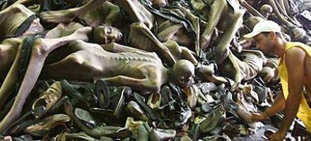 Carnaval de Brasil: polémica por una carroza sobre el Holocausto