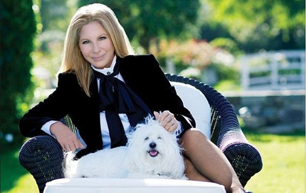 Streisand y su inseparable perrita blanca Sammie.