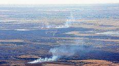 desolador. El panorama en diversos sectores de las islas es penoso, tras más de seis meses de quemas reiteradas en la zona del Delta.