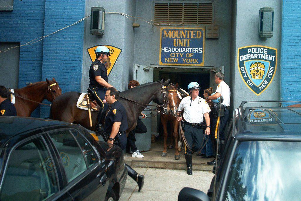 Un caballo de la policía causó un gran susto al salir a todo galope por las calles