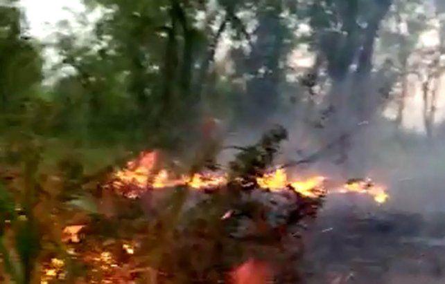 Las impactantes imágenes de los incendios en las islas entrerrianas