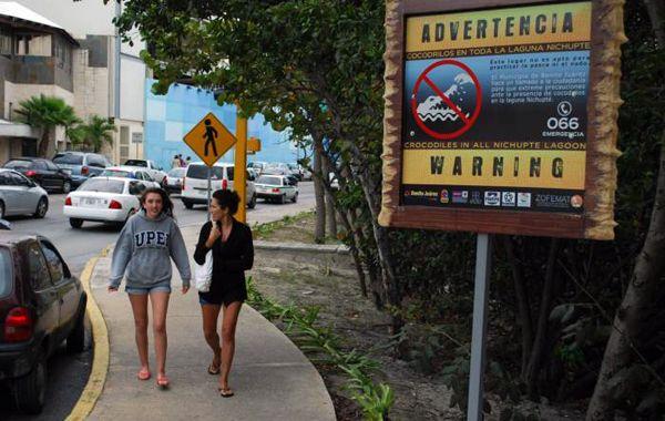 La zona tiene gran afluencia turística y está señalizada advirtiendo la presencia de los peligrosos animales.