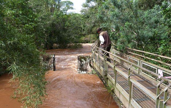 La crecida del río Iguazú provocó el cierre de los recorridos turísticos en el Parque Nacional. (Foto: NA)