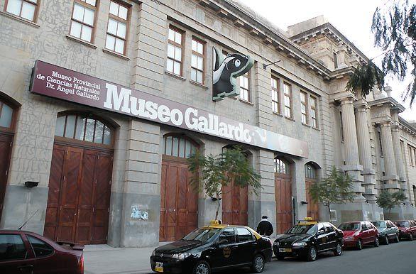 El robo sucedió en la esquina del Museo Gallardo.