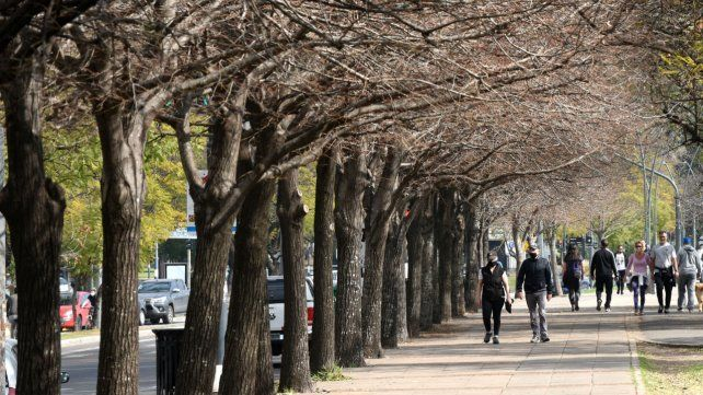 El tiempo en Rosario: un arranque de semana agradable y sin lluvias hasta el jueves
