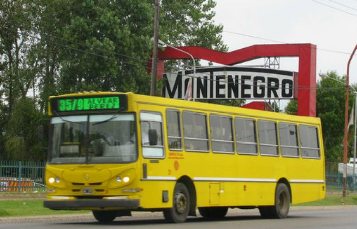 Los coches de Rosario Bus