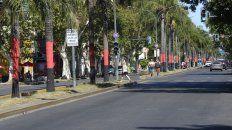 Las palmeras habían sido hidrolavadas en noviembre del año pasado, pero el vandalismo volvió a ocurrir.