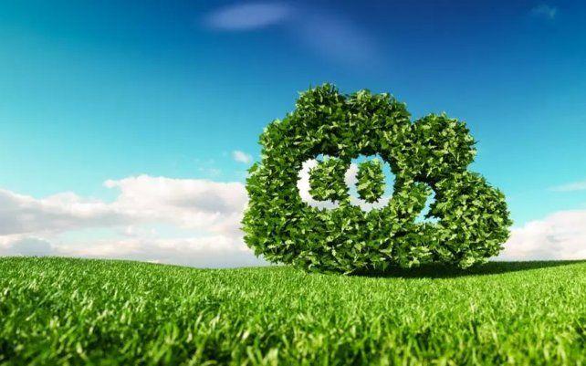 El estudio es el primero en detectar un umbral de temperatura para la fotosíntesis a partir de datos de observación a escala global.