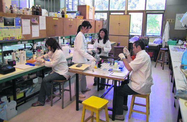 Ciencia. La facultad se traslada definitivamente al campo experimental de Zavalla en 1994.