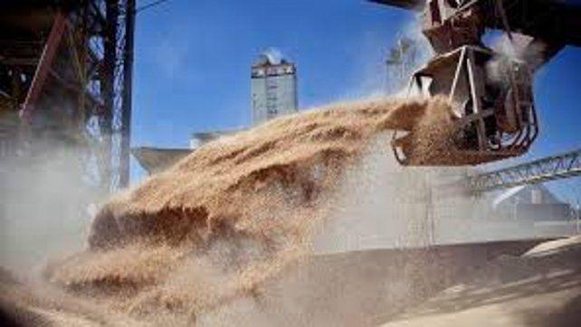 Los granos remontaron las bajas del lunes
