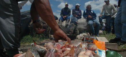 Pescadores amenazan con medidas por irregularidades en padrones