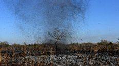 Miles de hectáreas en todo el Delta del Paraná sufrieron las consecuencias de las quemas indiscriminadas.