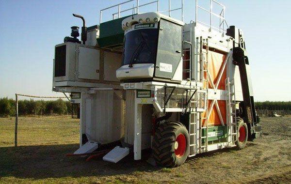 Primera. La Colossus es una cosechadora autopropulsada capaz de resolver la integridad de la cosecha de olivar.