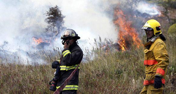 Un anciano murió en los incendios forestales en Chile, que ya devoraron 23 mil hectáreas
