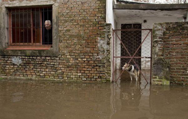 Penoso. Un vecino de un barrio de Luján soporta como puede el hecho de vivir en una casa anegada.