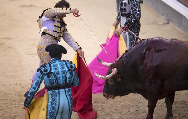 Un arte pasional. Los toreros se enfrentan a la férrea oposición de proteccionistas