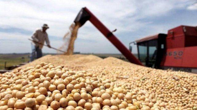 El precio de la soja volvió a subir después de siete rondas en baja.