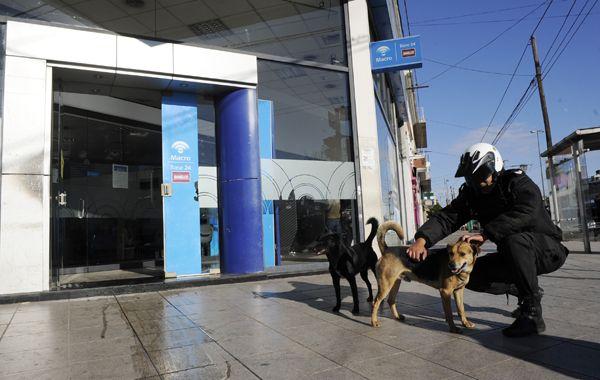 Uno de los policías tras liberar a los dos perritos mestizos