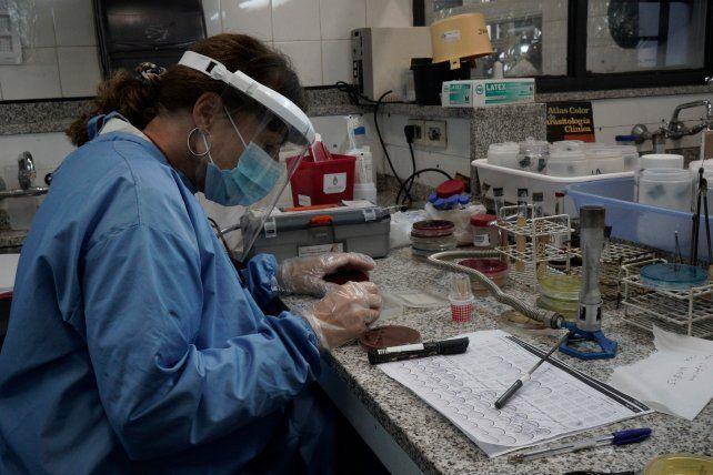El investigador Diego Mendoza explicó la historia de las investigaciones que permiten hoy realizar los test de PCR para detectar el Covid-19.