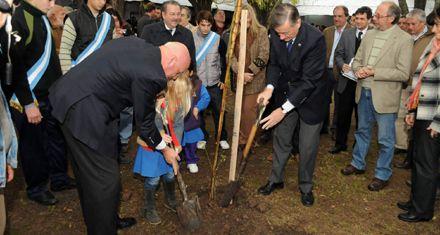 Empezaron a plantar 20 mil árboles a lo largo de la autopista a Santa Fe