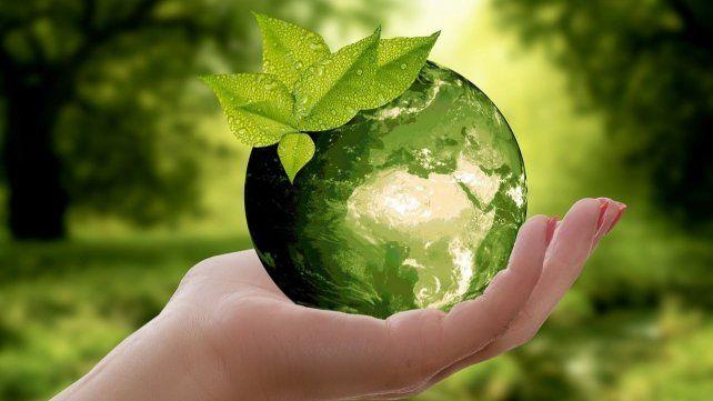 Cinco aplicaciones para cuidar el medioambiente y aprender ecología