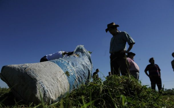 El mundo rural del sur de Santa Fe se vio impactado por los cambios en la agricultura.