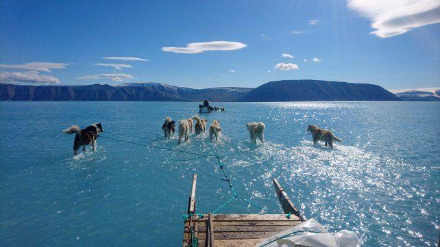 El cambio climático podría llevar a una gran catástrofe a la humanidad si no se toman urgentes medidas.
