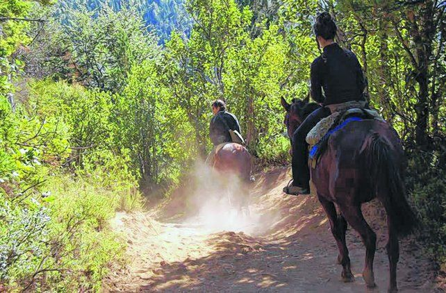 Manso y tranquilo. La tropilla está conformada por caballos que se caracterizan por su mansedumbre.