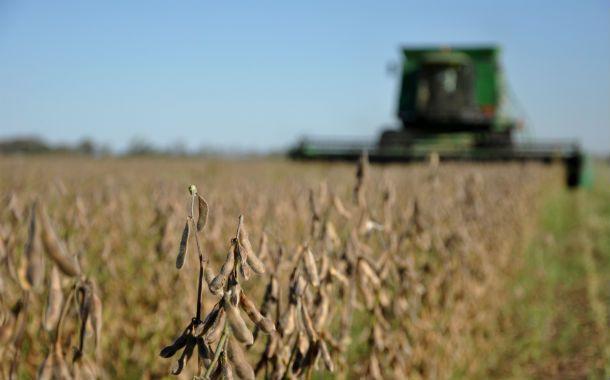 Las exportaciones de soja se retrajeron en la Región Pampeana
