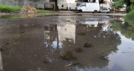 Reclamo por cloacas saturadas en el barrio 7 de Septiembre