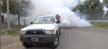 Admiten que en la ciudad hay cinco pacientes que podrían padecer dengue