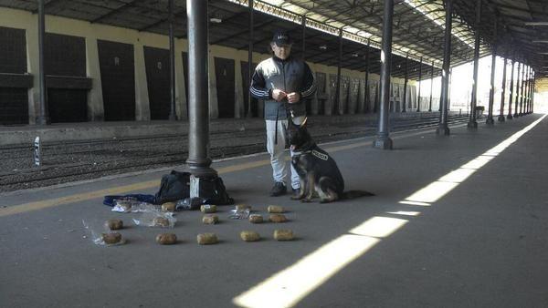 La policía detuvo hoy a un hombre que esperaba el tren a Tucumán con 15 panes de cocaína en una mochila.