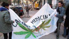 Pedidos a viva voz. Durante años se vinieron realizando manifestaciones para incorporar este producto en la medicina tradicional.