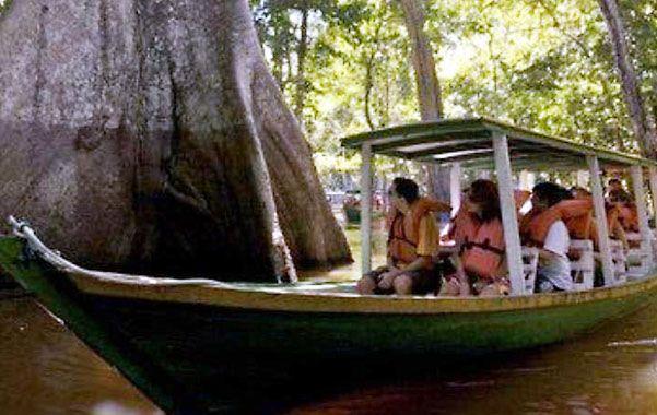 Manaos. Un grupo de turistas disfruta de la belleza de un río en una zona de 400 islas cubiertas por bosques y selvas vírgenes.