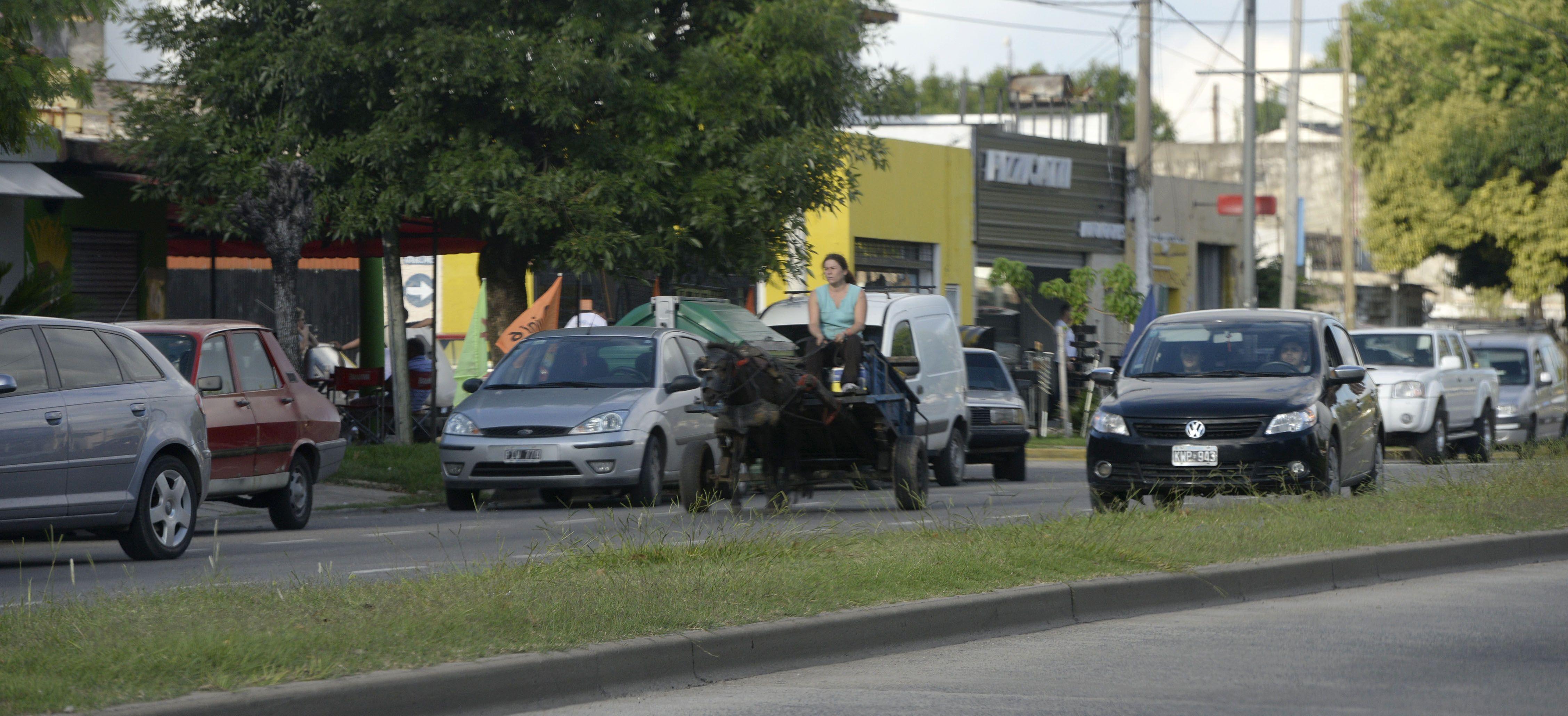 en retirada. Una mujer conducía ayer un carro tirado por un caballo en una avenida. Dentro de 60 días no podrá hacerlo más.