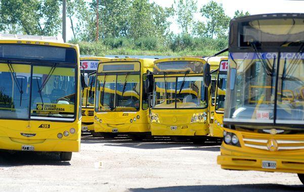 Las unidades de Rosario Bus