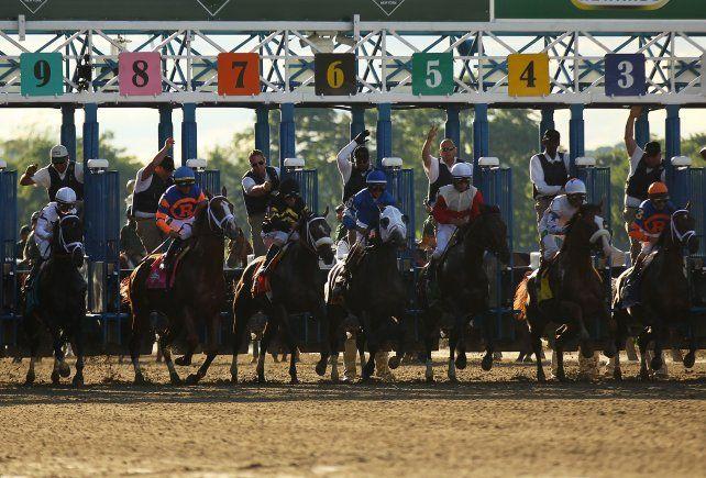 Primer paso. Diez potrillos pisarán la mítica arena del hipódromo de Belmont Park.