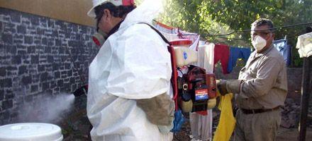 Confirman 17 casos de dengue en la provincia y 14 en el Gran Rosario